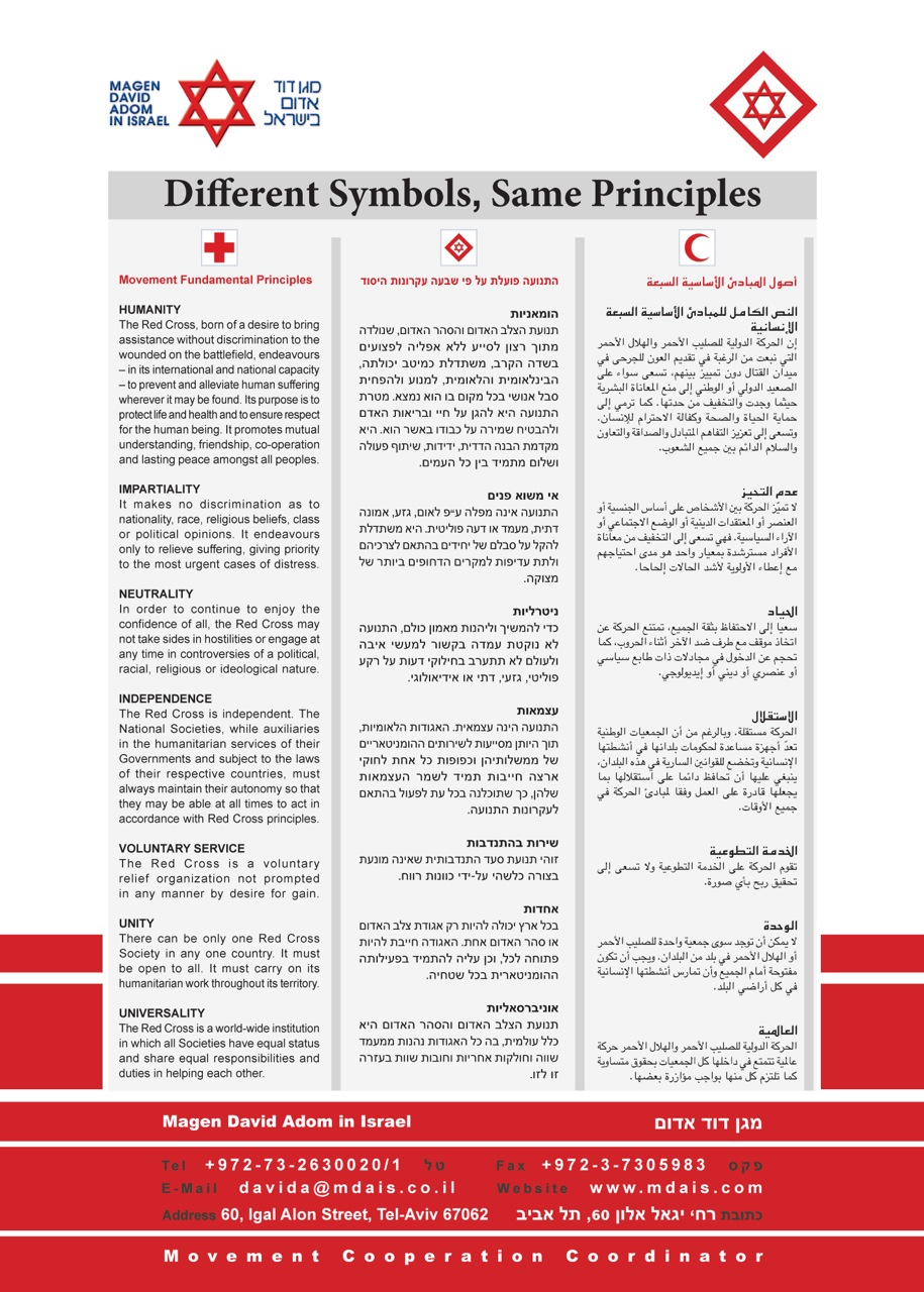 MDA 7 Principles Poster